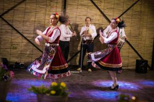 Folklore Dance Show