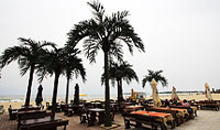 "Beach Restaurant & Bar ""LAZUR"" Sunny Beach"