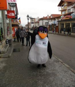 Meet THE PENGUIN !