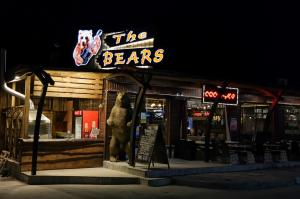 THE BEARS by Night