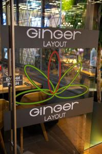 Grand Opening GINGER LAYOUT